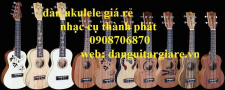 Đàn ukulele 06