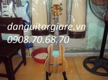 guitar ukulele 01