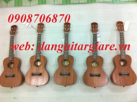 ukulele 03