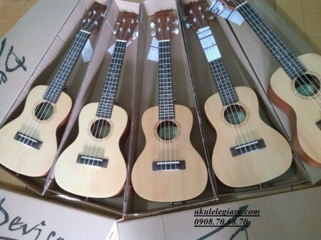 ukulele 05